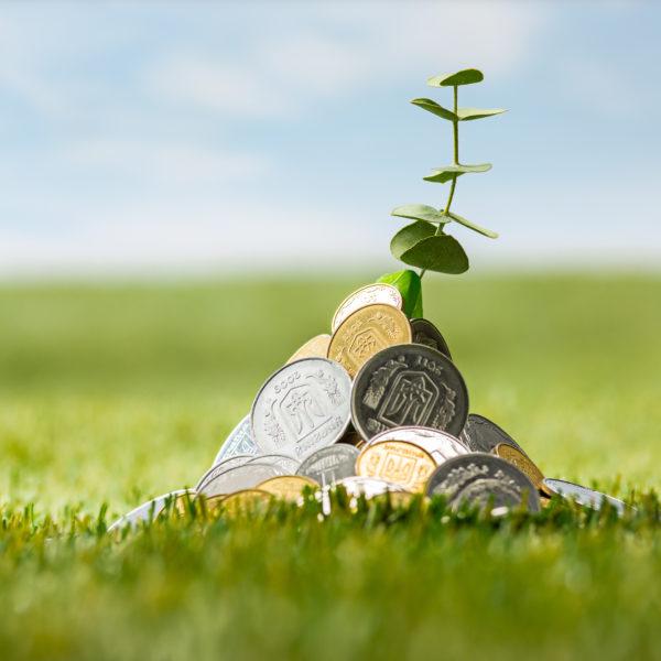 Tarifs site internet pour les PME et TPE